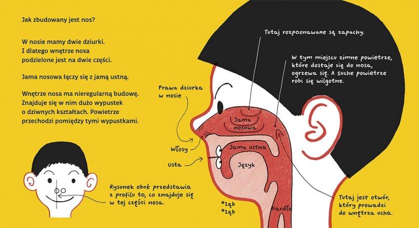 Dziurki w nosie